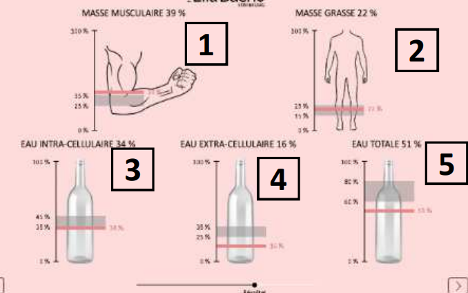 Analyses des fonctions corporelles