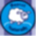 bv-logo-usa.png