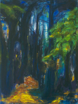 Dieper het bos in 2