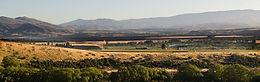 Locharburn Vineyard