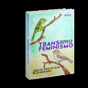 Transfeminismo - teorias e prática
