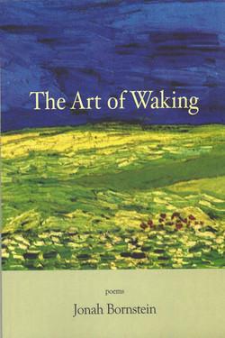 Art+of+Waking+Cover.jpg