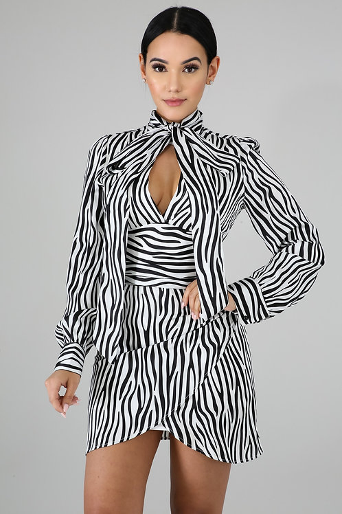 Zebra Attraction