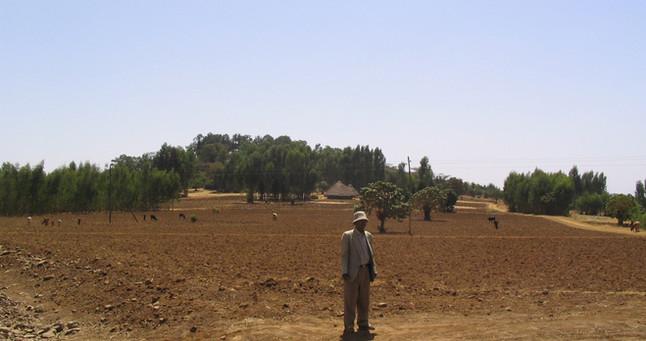 View to Ziguda Kidanemihret