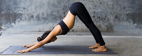 CrossFit hiringa yoga.png