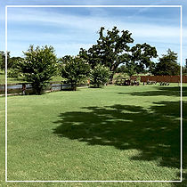 Lawn-at-Chisholm-at-Circle-R-Ranch.jpg