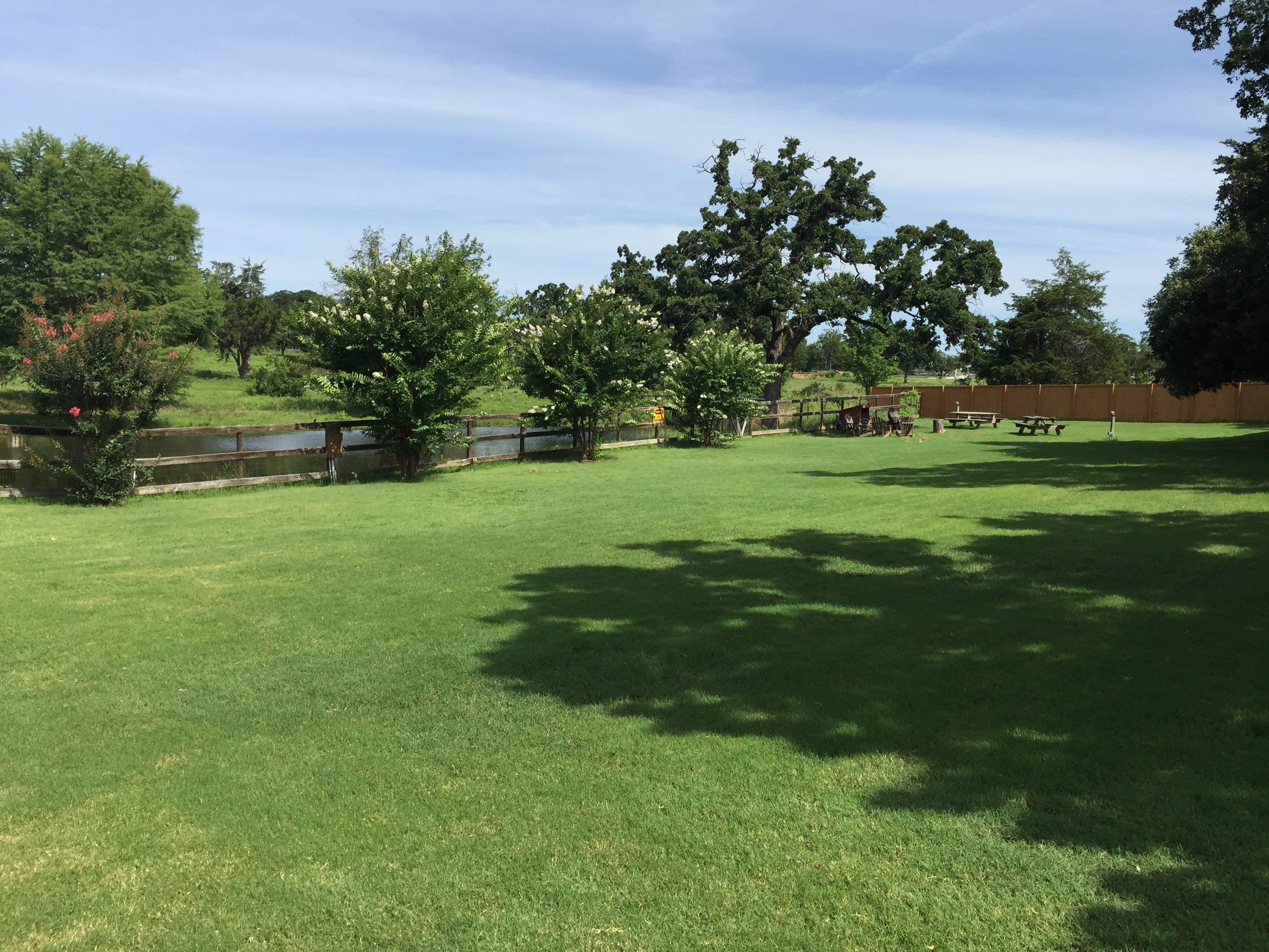 Chisholm lawn 1