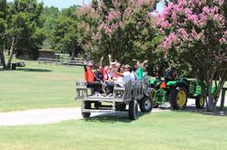 Tractor Wagon Rides  for Company Picnic