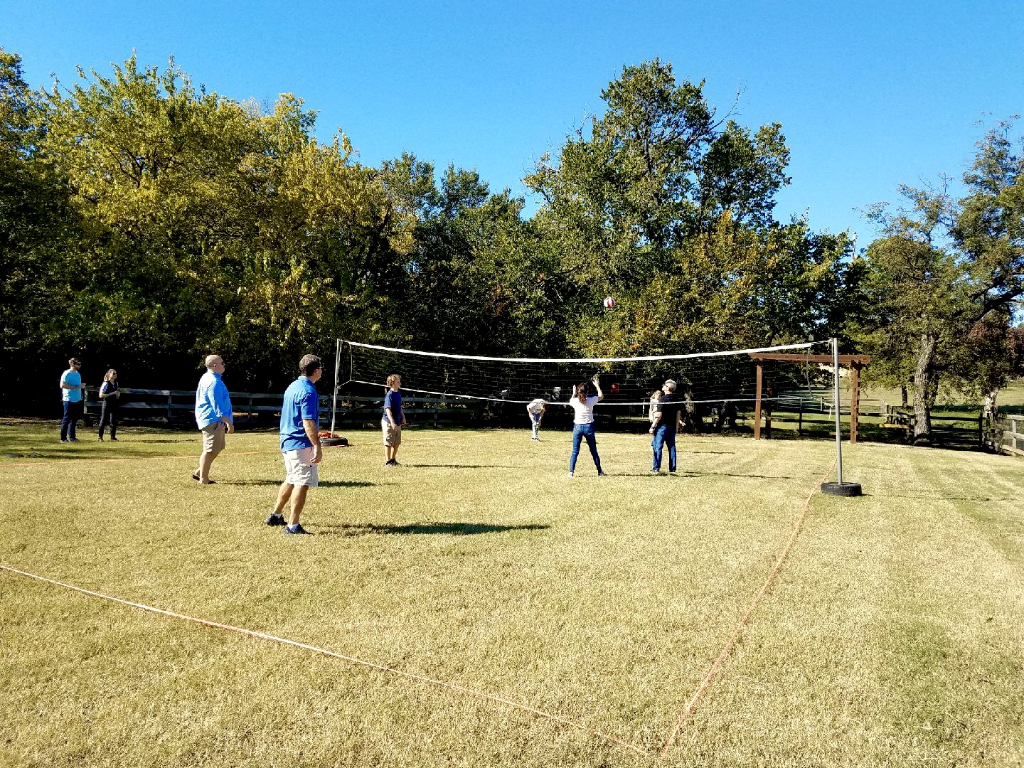 Grass Volleyball  for Company Picnic at