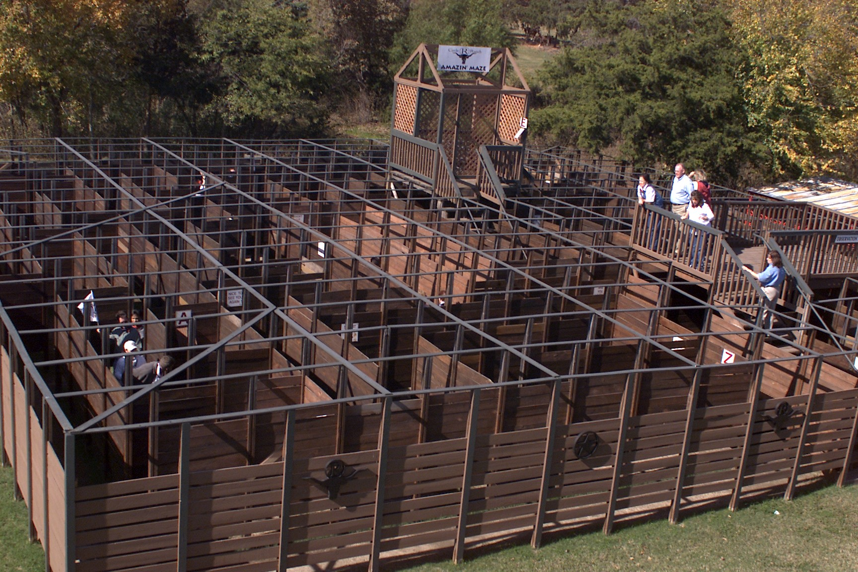 Amazin Maze  for Company Picnic at Circl