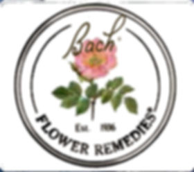 Bloemen en druppels
