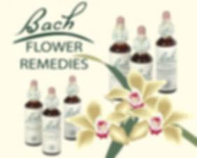 Bach remedie homeopatische druppels