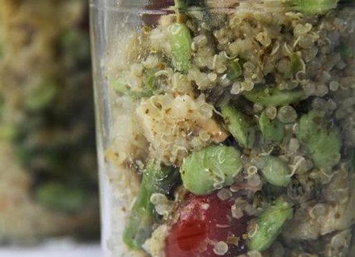 Quinoa Basil Pesto Salad