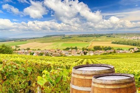 Quel avenir pour l'œnotourisme en Champagne ?