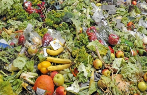 Le gaspillage alimentaire, enjeu du 21ème siècle et défi pour l'innovation