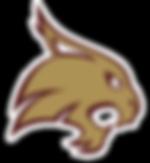 Texas State Hockey Logo