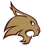 Texas State Hockey Logo