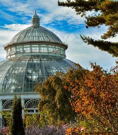 NY Botanical Garden Dome