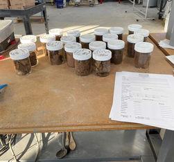 12-28-20 - 228 Soils Samples in Jars.jpg
