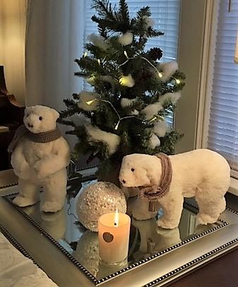 christmas.polar.1