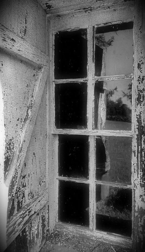 ShaneHarrix.window