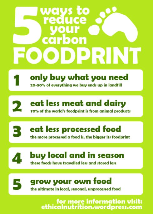how to reduce ecological footprint at school