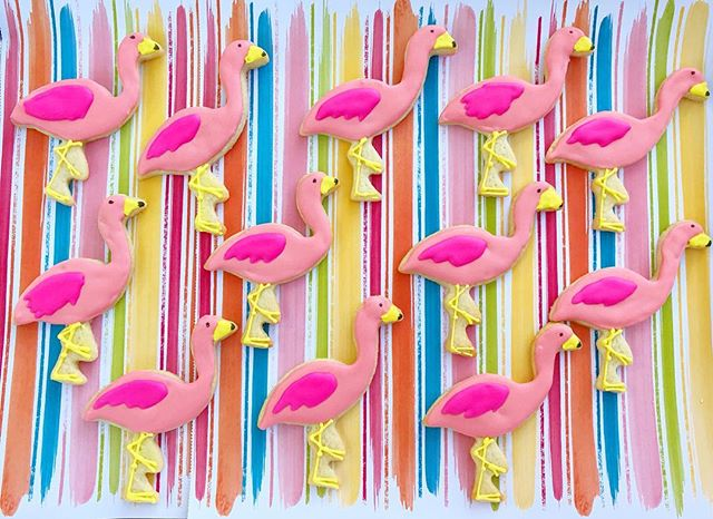 A flock of flamingos_ What do you even call a bunch of flamingos_ 🤷🏻♀️These remind me of sunny su