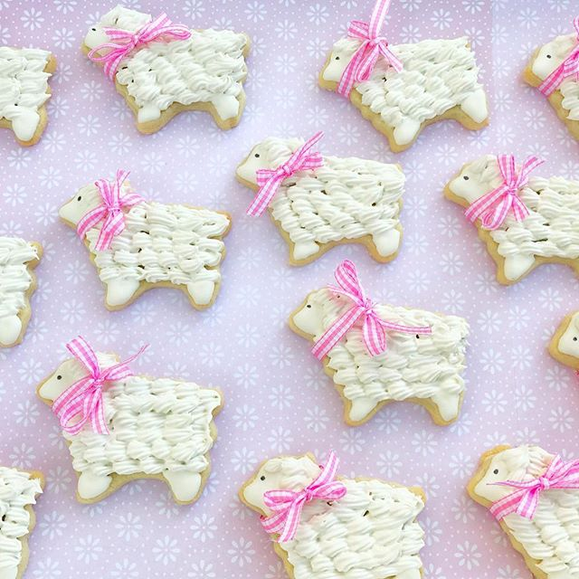 Sweet Little lambs 💕 I love these and their cute gingham bows! ._._Yesterday's weather was such a t