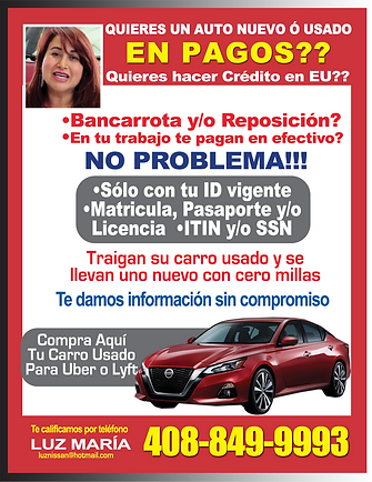 Luz Maria Premier Nissan - Bamba.png