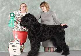Multi.Ch. Hranitel Dinasty Bogdan Tarasovich Iz Teremka group 3rd at Grannd River Kennel Club show 2013