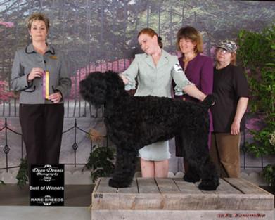 2008 Best of Winners 2008
