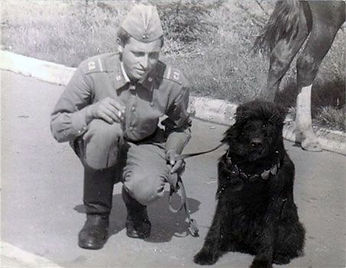 Russian Soldier Showing his Black Russian Terrier