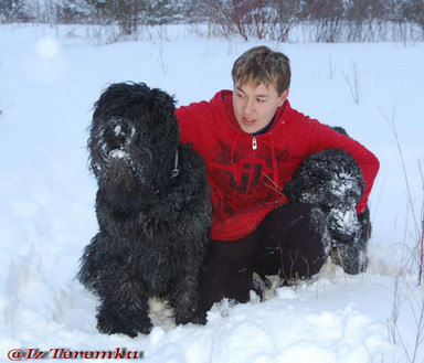 Ruslan holding Black Russian Terriers