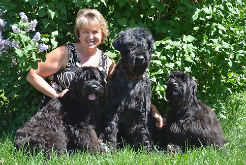 Lana kneeling in the background with Black Russian Terriers (l-r) Femir, grandmother Groosha and Milia
