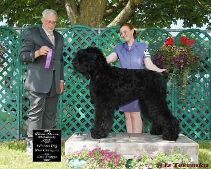 Winner's Dog 2008