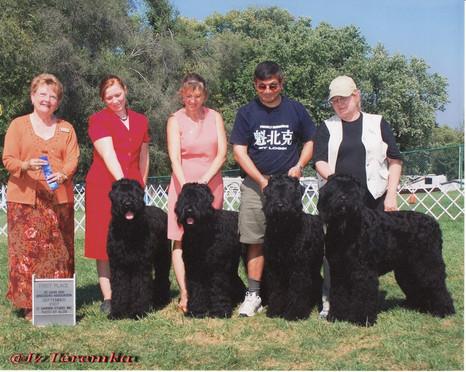 St. Louis Dog Breeders Association 2007