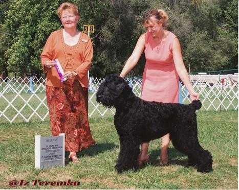 St. Louis Dog Breeder Association 2007