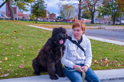 Black Russian Terrier At Lake Ontario Park Kingston ON