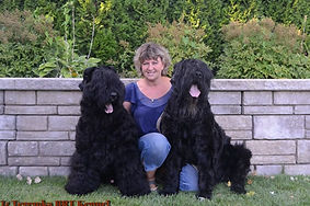 Lana and Her Two Male Black Russian Terriers