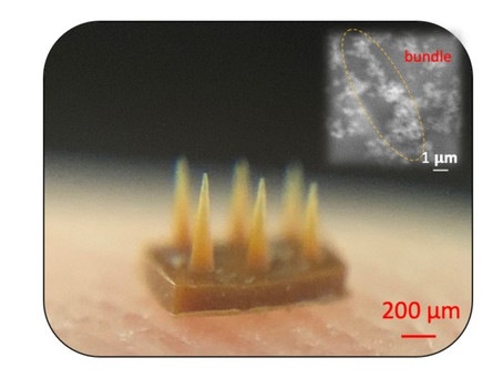 Magnetic field-assisted 3D printing of composite with mechanical reinforcement