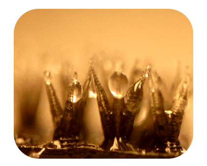 3D Printing of Bioinspired Structures for High-Efficient Water Harvest