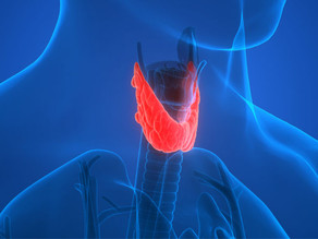 A Primer on Thyroid Dysfunction