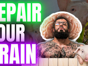 How to Rehabilitate Your Brain with Cerebrolysin