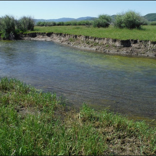 Allen Streambank Restoration Photo.jpg