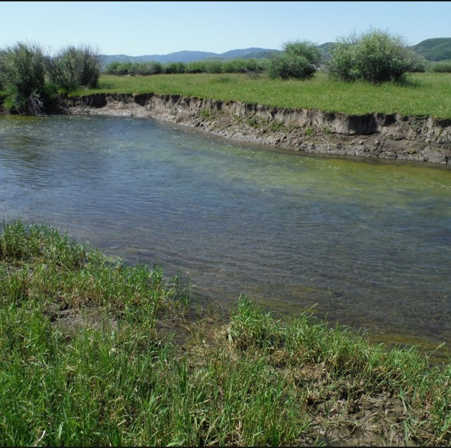 Allen Streambank Restoration Photo.jpg