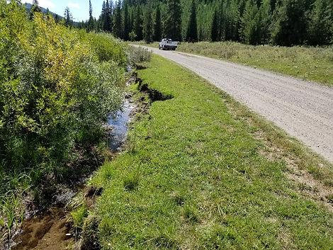 Diamond Creek Road Relocation.jpg