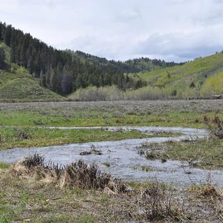 Sheep-Creek-Thumbnail.jpg
