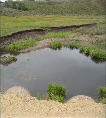 Chippy Creek before.jpg