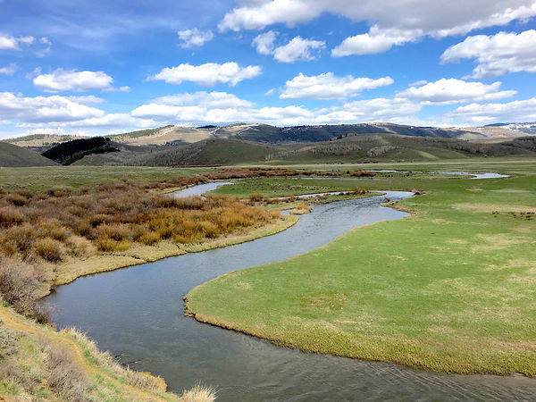 Blackfoot River temp monitoring (1).jpg