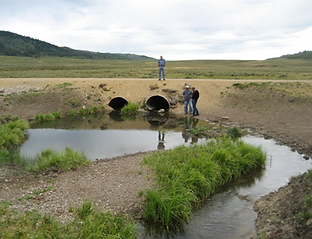 Chippy Creek culverts (2).png
